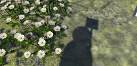 flowergame